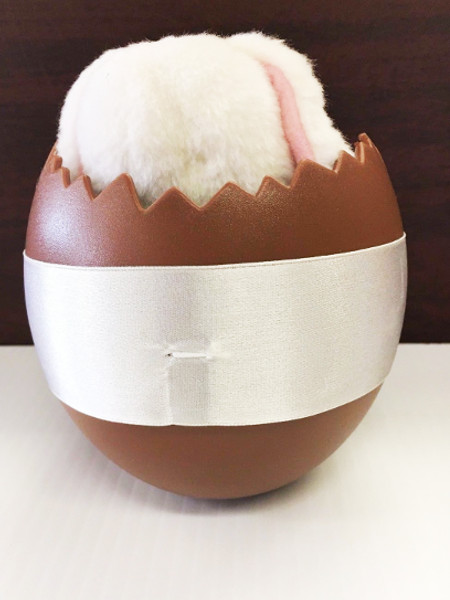 Anne Geddes Baby Bunny in Easter Egg