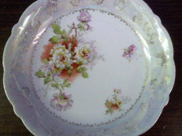 Austria White Porcelain Plate Decorated with Flowers